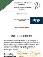 Catecolaminas R