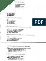 papelucho historiador prueba.pdf