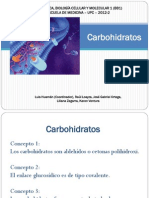 Tema 4 Carbohidratos