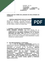 Demanda Bertha Febrero 23-2007 -Demandado La Policia