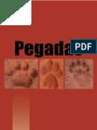 Como Identificar Pegadas de Animais