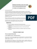 RESUMEN DE EMBRIOLOGIA.docx