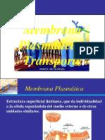 Clase 412  membrana y transporte.ppt
