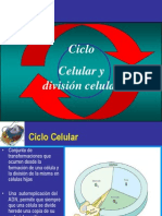 clase 612 mitosis y meiosis.pdf
