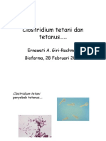 Clostridium tetani.pdf