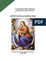 110430476-Mariologia