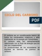expo_ecologica.pptx