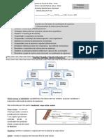 Ficha de Trabalho Informativa .Sistema Nervoso