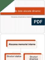 Structuri de Date Alocate Dinamic