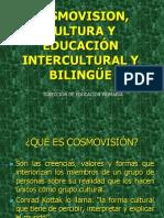 Cosmovision y Cultura