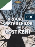 Arborele Căptărenilor din Costiceni - Vlad Ciubucciu, Victor Captari (2004)