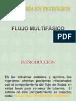 Flujo Multifasico R M