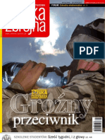 pz31_2007