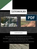 LITOSOLES