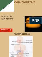 Digestivo 1