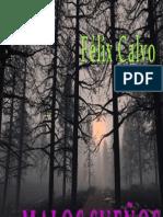 Calvi, Felix - Malos Sueños _ Relatos Cortos De Terror.pdf