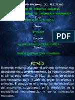 potasio fertilidad.pptx
