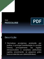 Pediculose apresentação em Slides