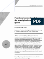 Functional connections between