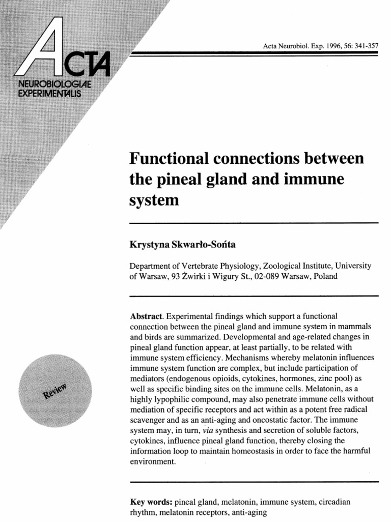 Functional Connections Between The Pineal Gland And Immune System
