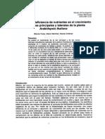 Efectos de La Deficiencia de Nutrientes Proyecto (1)