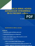 insuficiencia renal renal aguda en el paciente crítico 2010