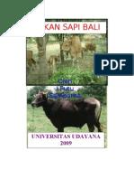 Pakan Sapi Bali