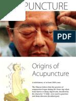 Acupuncture (presentation) by Zheng Jiayin