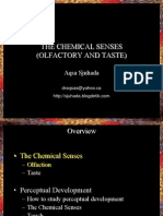 ChemicalSenses.ppt