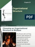 Organizational Behavior Chapter 13