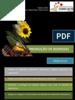 Producao de Biodiesel-2
