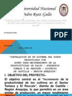INSTALACIÓN DE UN SISTEMA DEL RIEGO TECNIFICADO