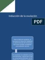 Induccion de La Ovulacion
