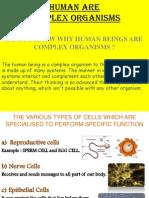 complex organism