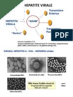 Hepatite Cu Transmitere Enterica