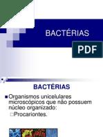 Bactérias_Bioloja - Cópia