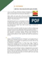 caso_estudio_fcem_u02_2013
