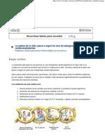 CD 14 - Socorrismo
