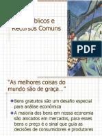 Ch11 Bens Públicos e Recursos Comuns