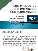 31063349-Leche-y-Productos-Lacteos-2010-1[1]