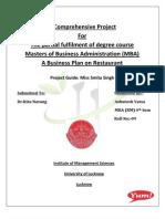 My Business Plan (Ashutosh)4