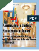 Maximizando La Justicia en La CIDH