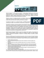 Procesos de negocio.pdf