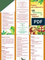 Programa Para El Diplomado en Herbolaria y Medicina Tradicional Mexicana 090319