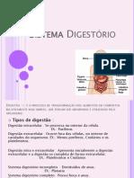 Sistema Digestório - AC2