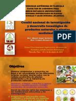 Comite Investigacion Desarrollo Tecnologico Foro-seminario 2013