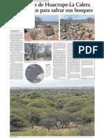 boskes huacrupe.pdf