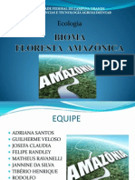 Ecologiaa- Bioma Da Amazonia