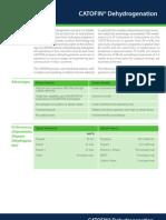 CatofinDehyrogenation-12 (2)