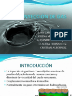 Expo de Inyeccion Gas y Co2